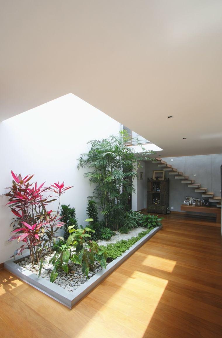 decorar con plantas opciones espacio amplio jardin interior ideas