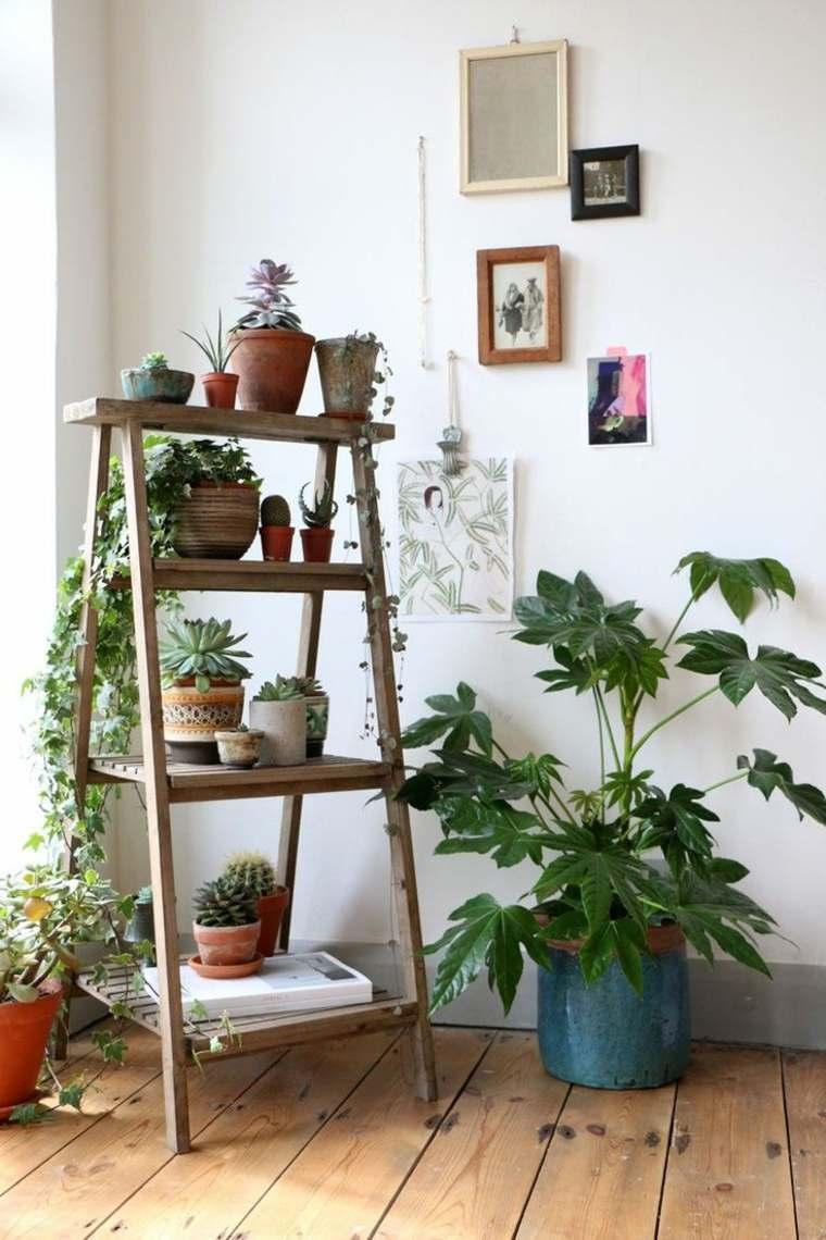 decorar con plantas opciones macetera madera ideas