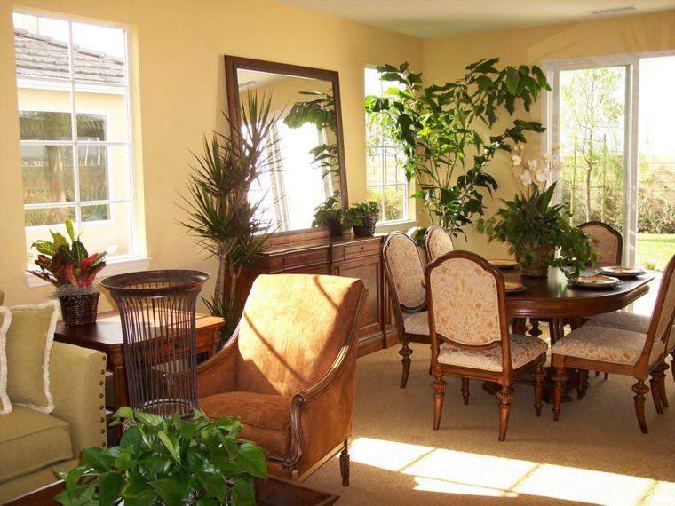 decorar con plantas opciones salon comedor diseno clasico ideas
