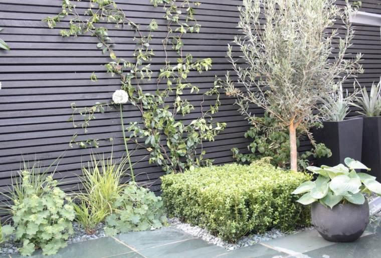 diseno de jardin urbano valla plantas trepadoras ideas