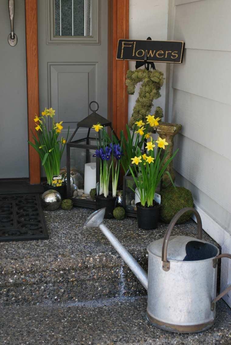entradas casas especiales muros flores