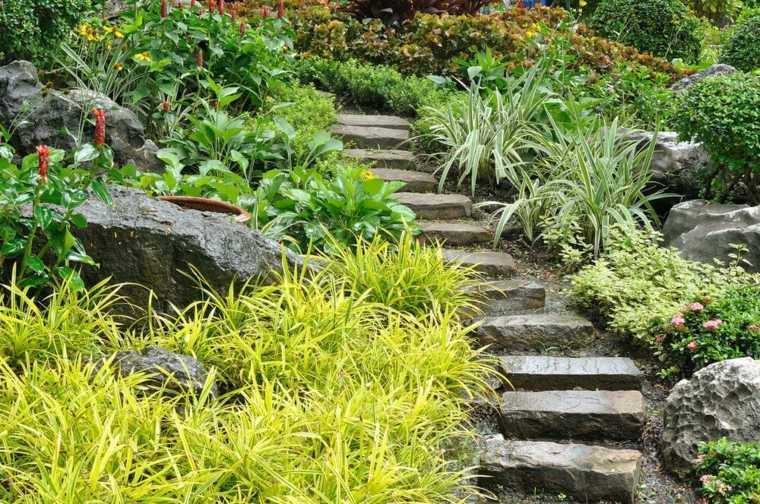 escaleras jardin muchas plantas verdes