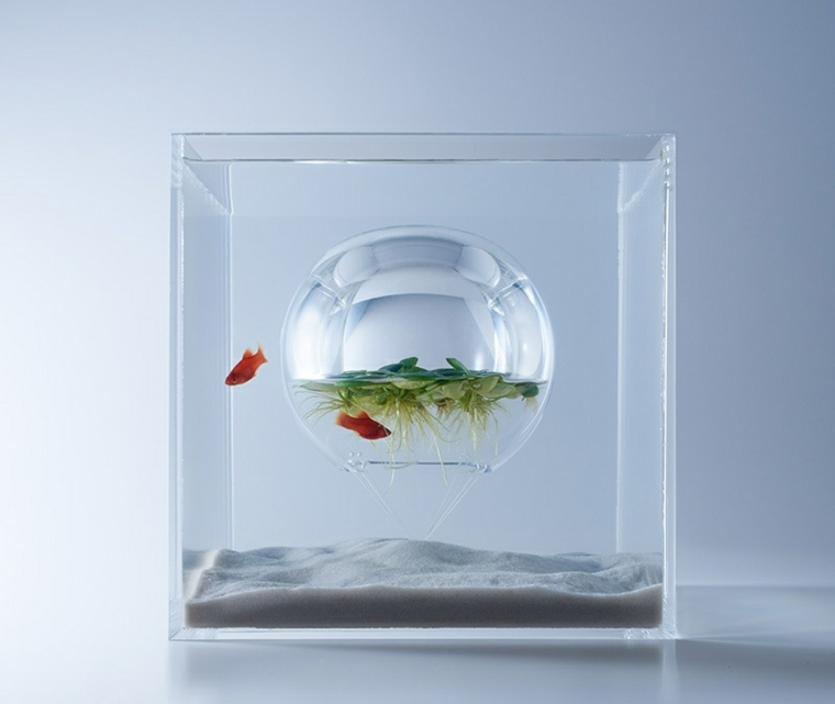 esfera pompa interior acuario plantas