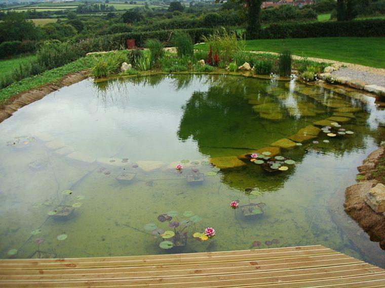 estanque natural forma redonda loto