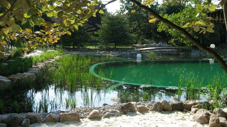 estanque natural piscina jardin