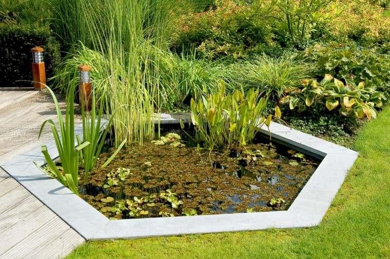 estanques jardin opciones aire libre plantas acuaticas ideas