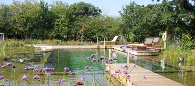 estupenda piscina natural diseno moderno