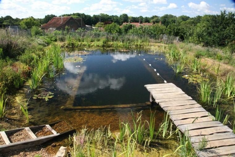 estupenda piscina natural estanque plantas