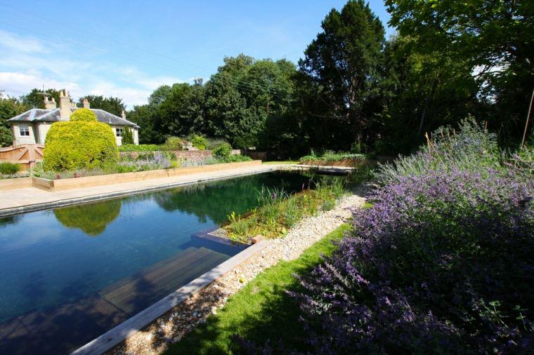 estupenda piscina plantas filtros lateeral