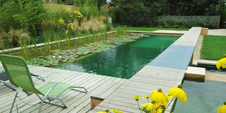 Diseno Baños Quimicos:Las zonas de baño y la regeneración en la piscina natural pueden