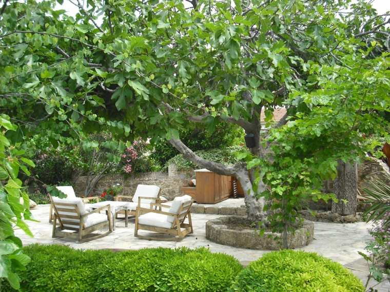 estupendo diseño jardin arbol grande