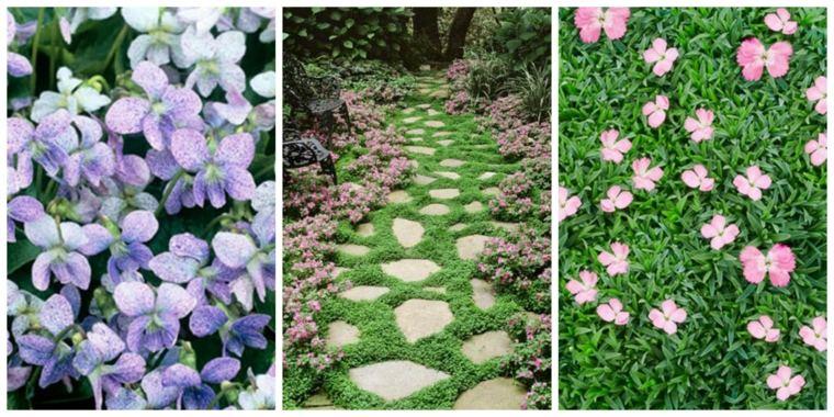 florecillas suelo jardines cesped deco