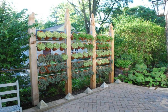fotos de plantas sistemas especiales maderas