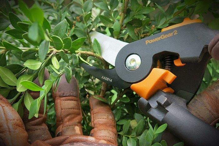 guantes cuero cuidado planta exteriores