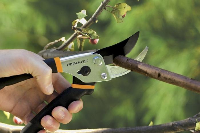 herramientas de jardineria fragmentos muestras corte
