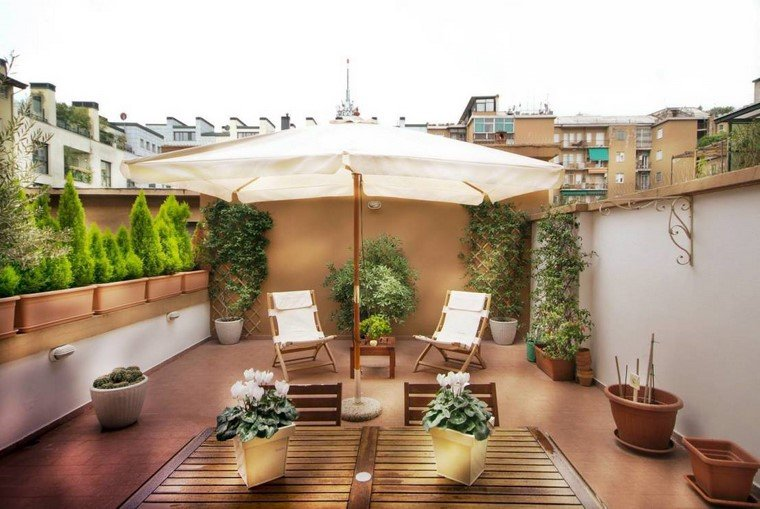 ideas terrazas macetas luminosas plantas opciones modernas