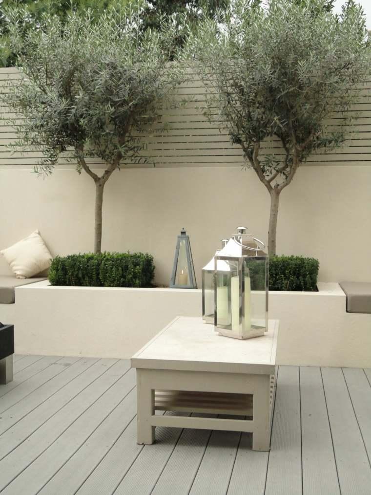 jardineria diseno de jardin urbano olivos ideas
