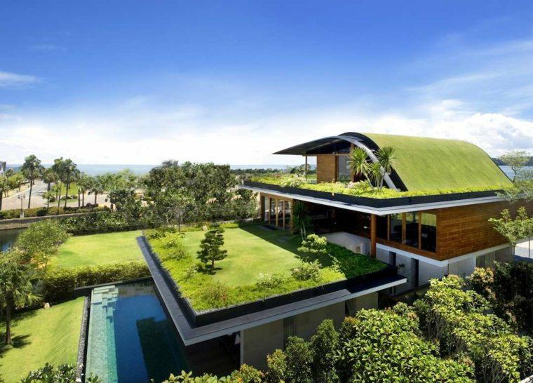 la azotea techo casa cubiertos cesped plantas ideas