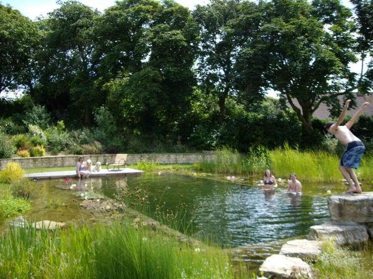 nino roca piscina natural plantas