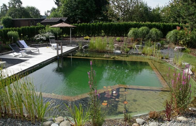 original diseño piscina natural
