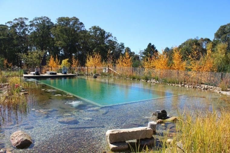 piscina grande filtros naturales