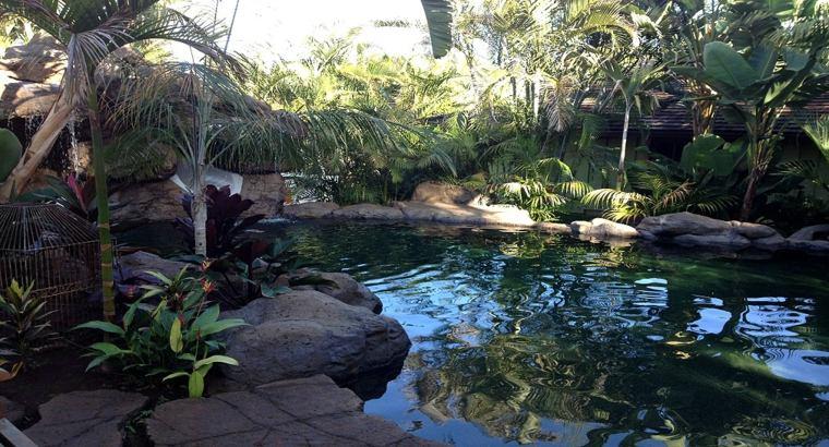 piscina original diseno aspecto natural