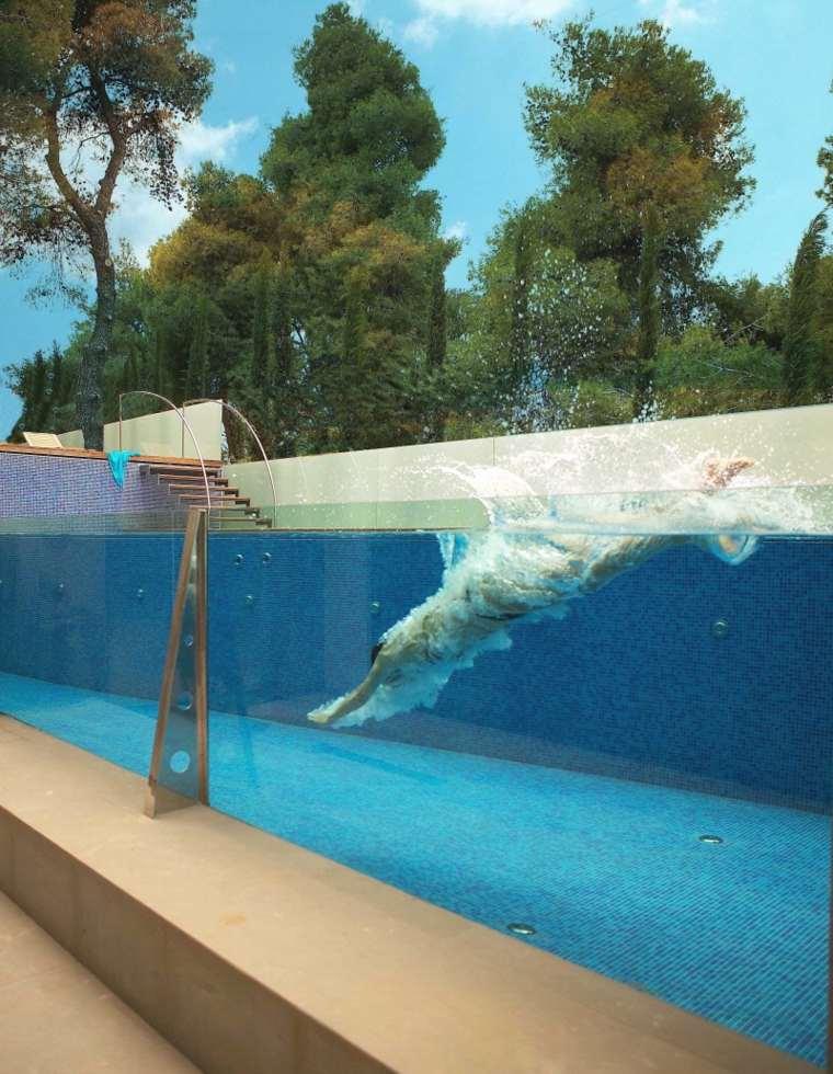 piscina transparente opciones diseno jardin ideas