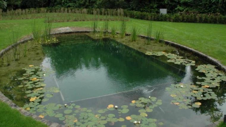 piscina estanque agua redonda