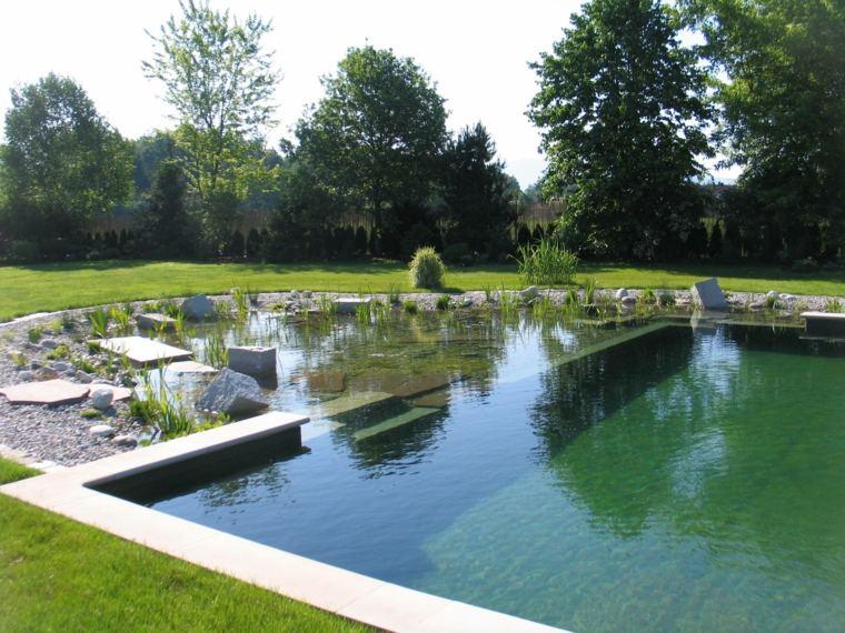 piscinas naturales para jardines grandes