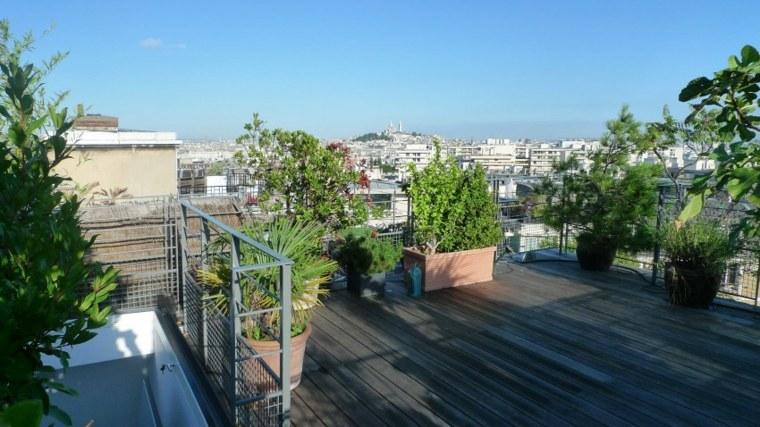 plantas macetas madera techo casa ideas