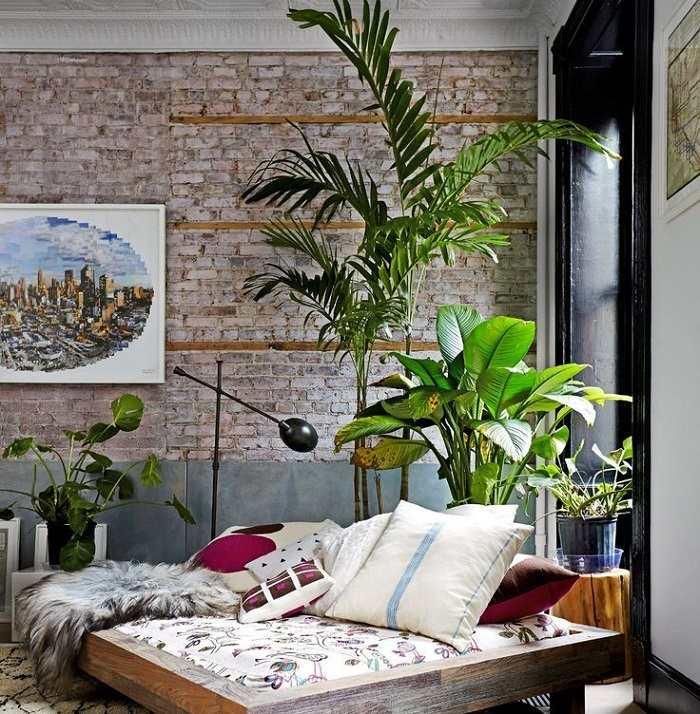 Plantas de interior resistentes 10 ideas y consejos - Decoracion plantas interior ...
