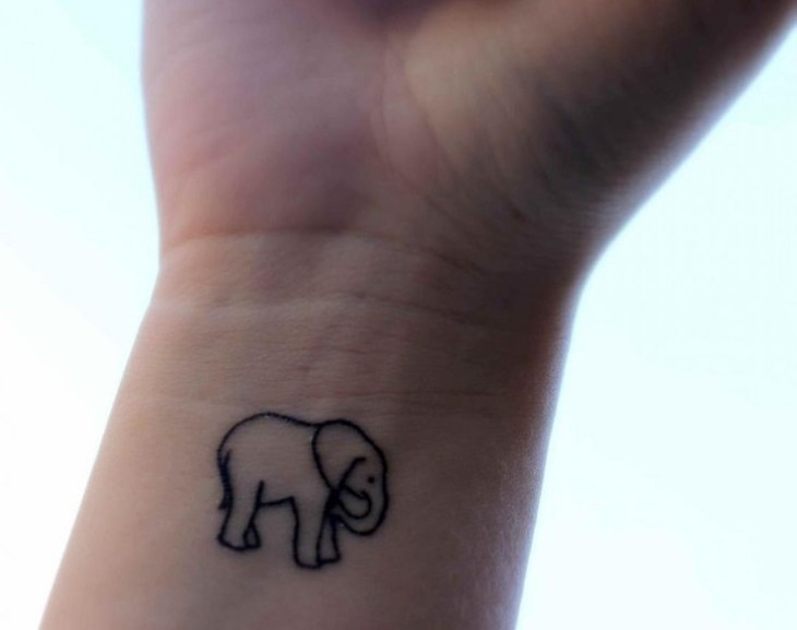 relleno claro elefante bello manos