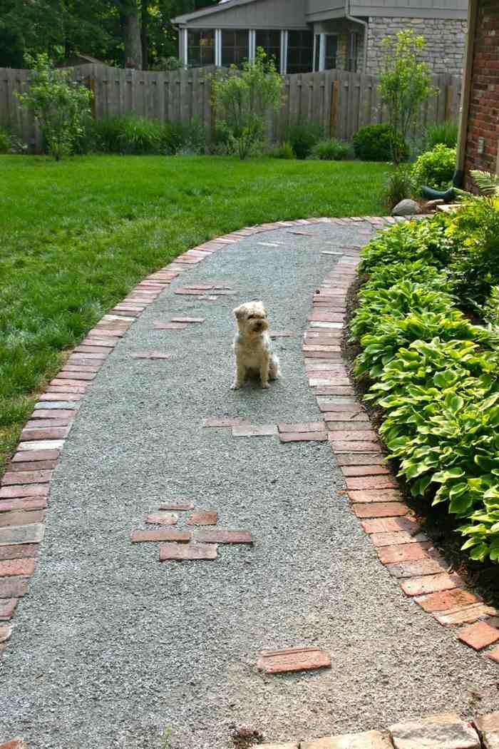 senderos estantes conceptos ladrillos perro