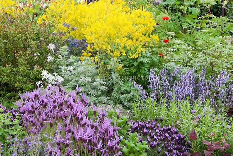 bonito diseño paisaje jardín