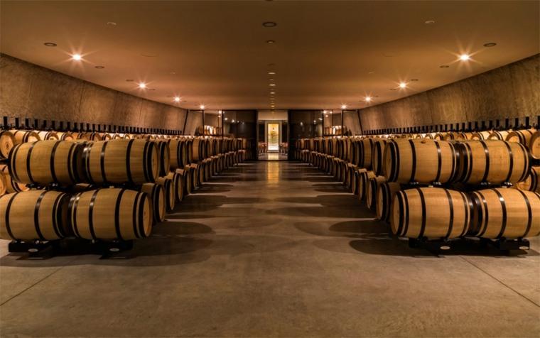 bodega barriles vino