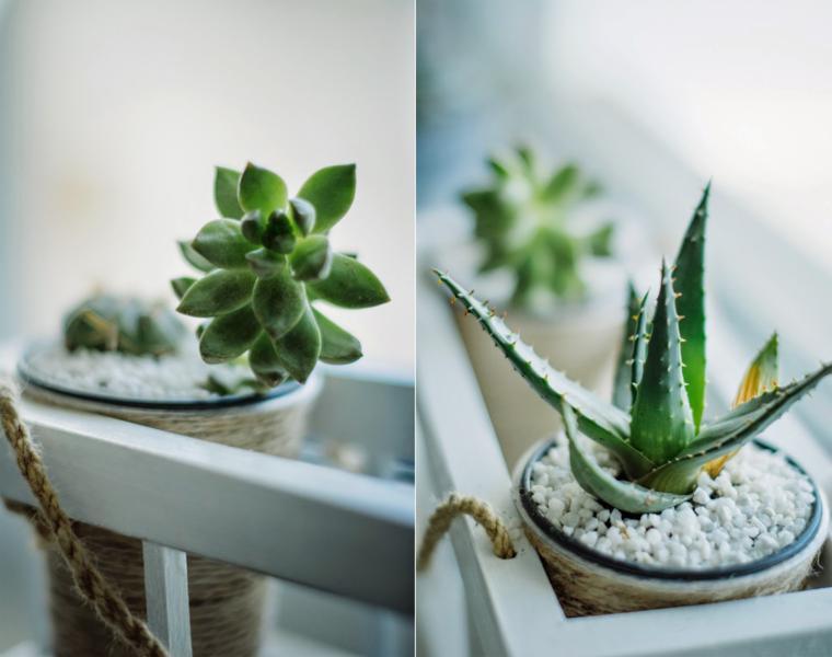 bonita decoración estilo minimalista