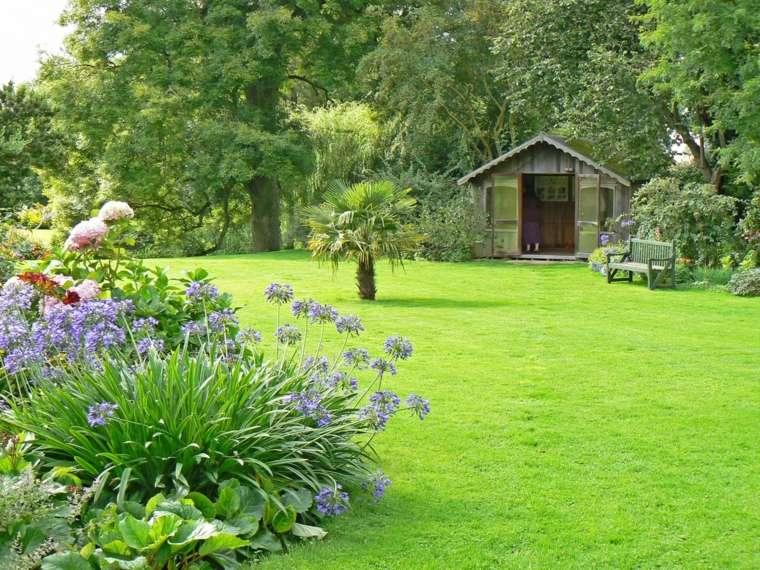 bonito jardin plantas flores césped