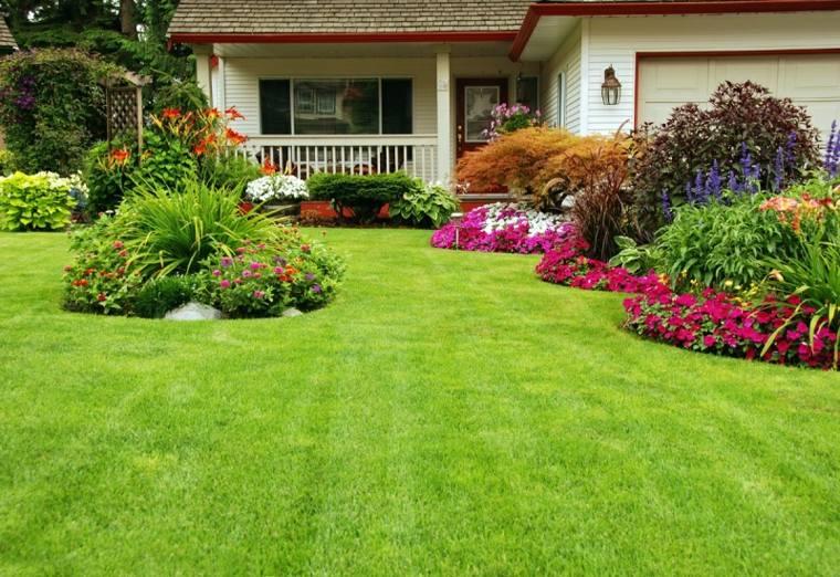 bonito jardin cesped plantas flores