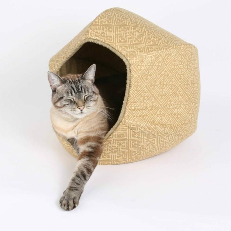 cama para gatos forma diferente