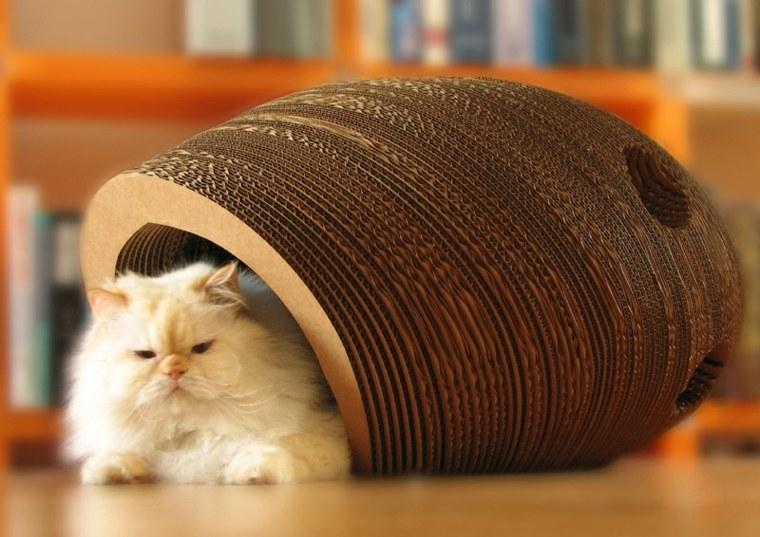 cama para gatos suelo
