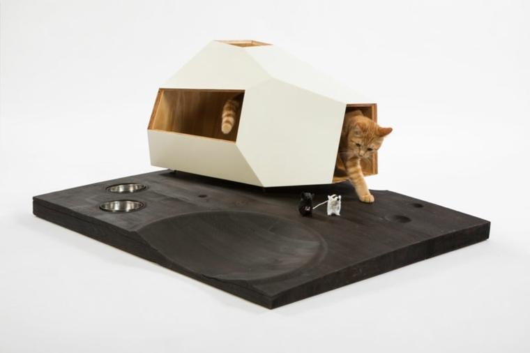 camas de gatos superficie luces