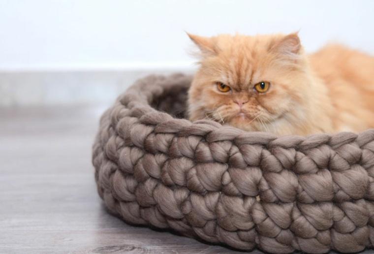 camas para gatos cesta trenzada