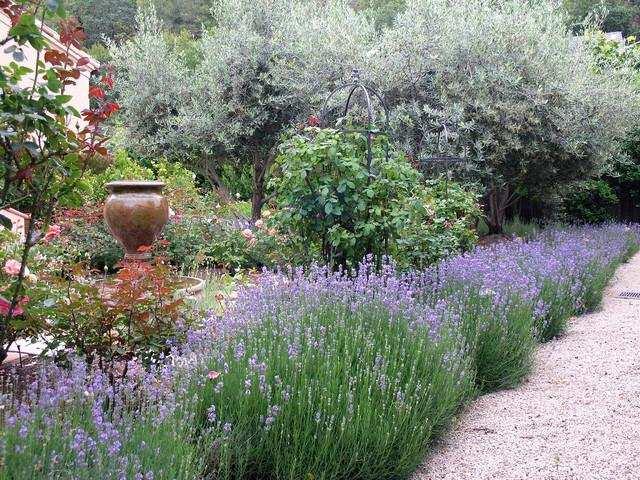 camino jardin decorado lavandulas