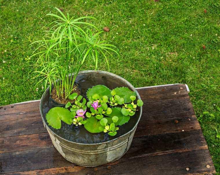 Fuente de agua diy con un bonito jard n acu tico estilo zen for Peces para fuente exterior