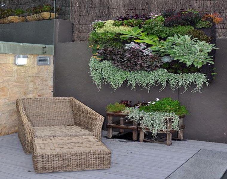 Plantas suculentas para decorar la terraza 24 ideas for Jardines verticales para terrazas