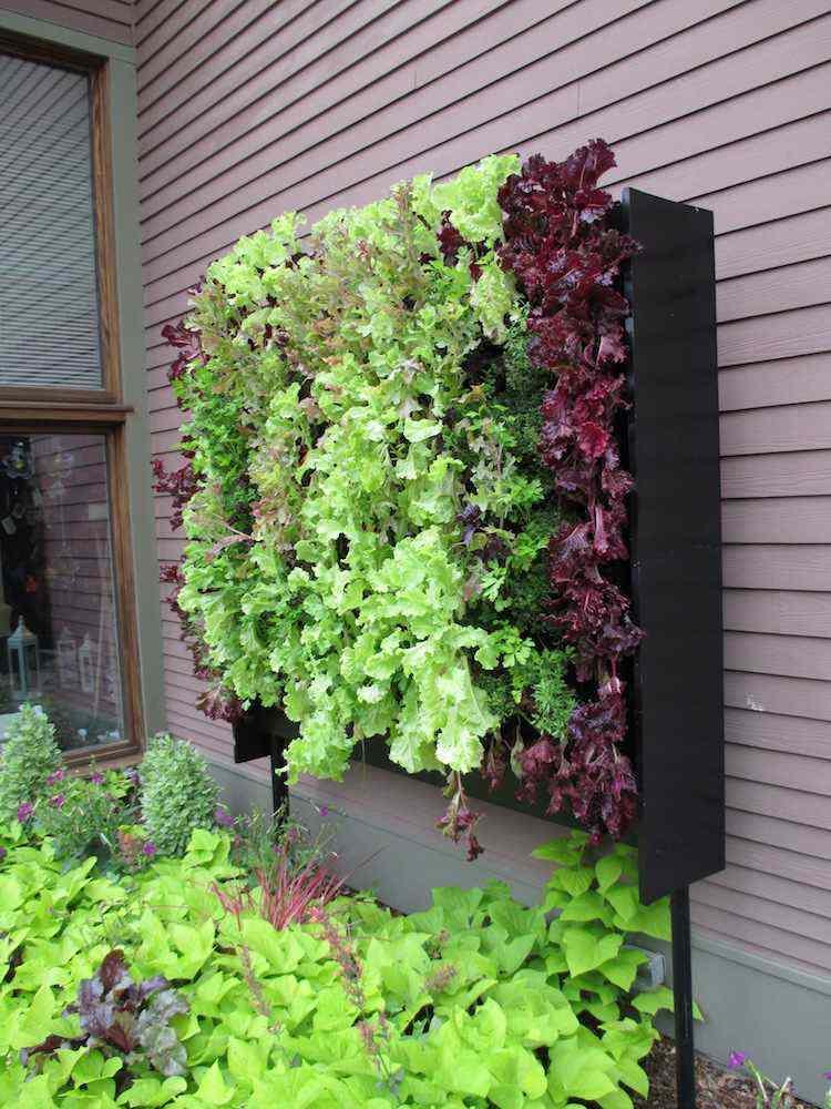 huerto maneras plantar vegetales hierbas aire libre ideas