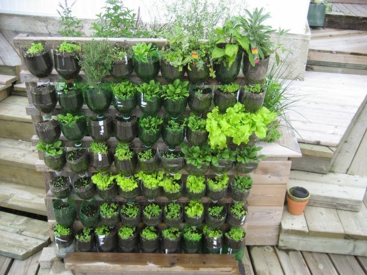 huerto maneras plantar vegetales hierbas envases plastico ideas