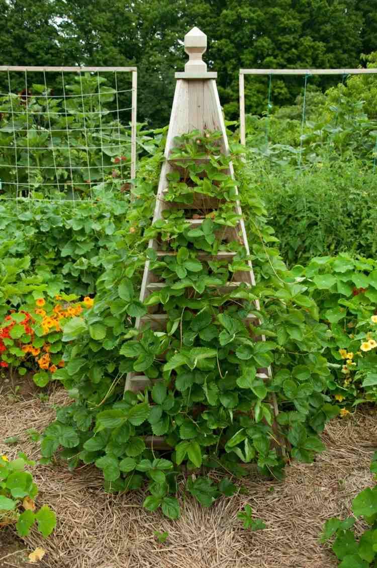 Huerto vertical 34 maneras de sembrar vegetales for Hierba jardin