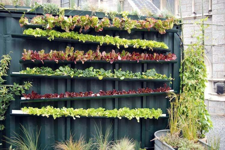huerto vertical maneras plantar vegetales hierbas lechugas sistema riego ideas