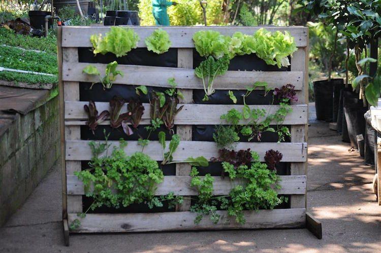 huerto vertical maneras plantar vegetales hierbas paletas ideas